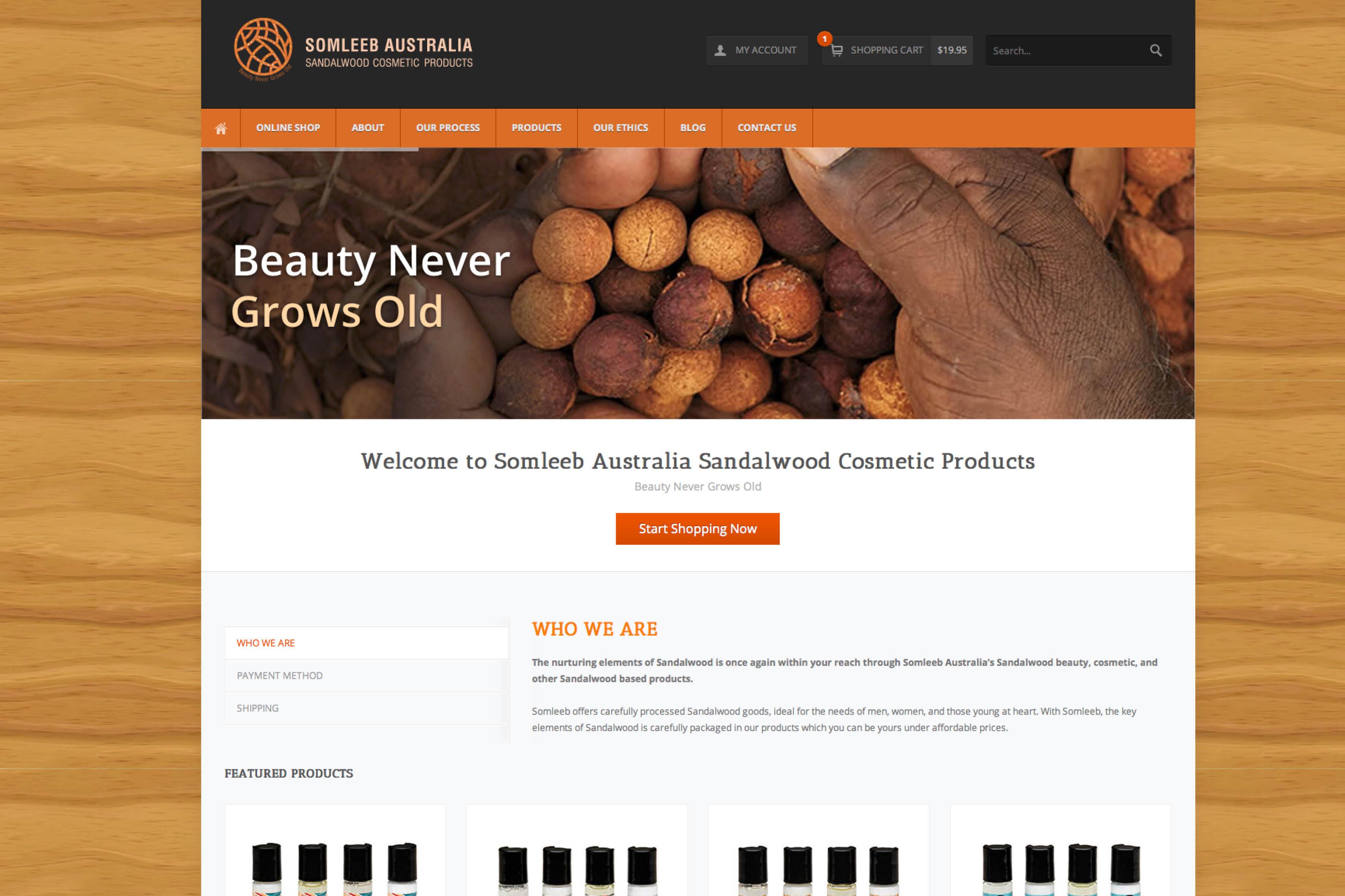 website-design-perth2